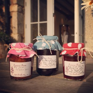 Jams made with Treverra fruits.